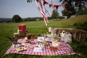 Original_picnicpartyinabox