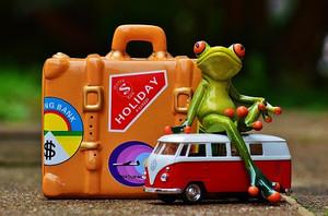 Frog991312_1920